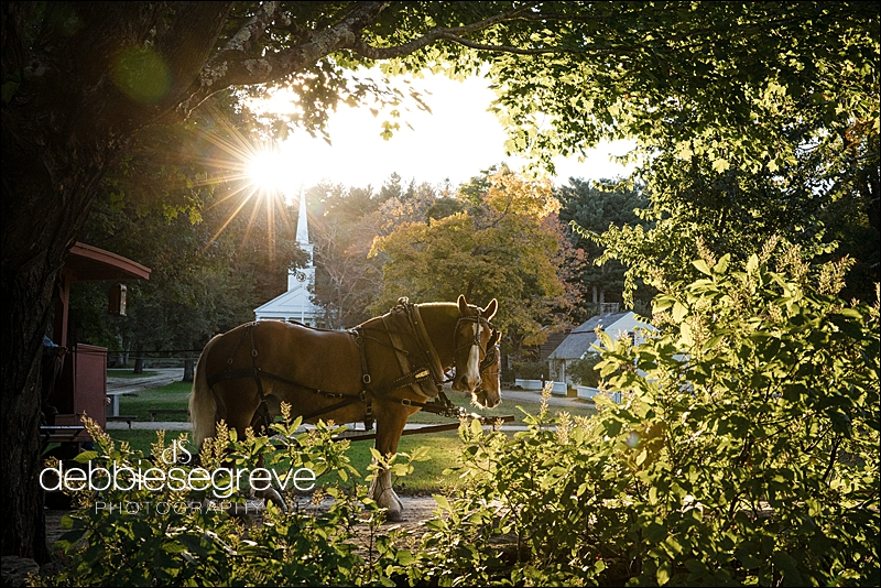 Debbie Segreve Photography Old Sturbridge Village Wedding Photographer0032.jpg